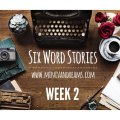 Six Word Stories: Week 2 Recap | Mini Van Dreams