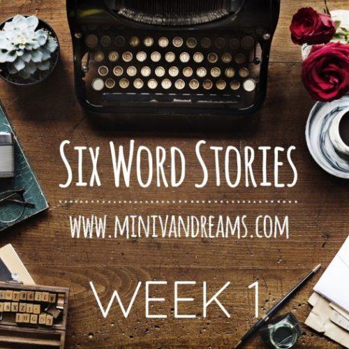 Six Word Stories: Week 1 Recap | Mini Van Dreams