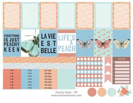 Free Printable Planner Stickers: Peachy Keen   Mini Van Dreams