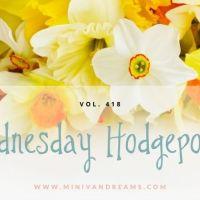 Wednesday Hodgepodge Vol. 418