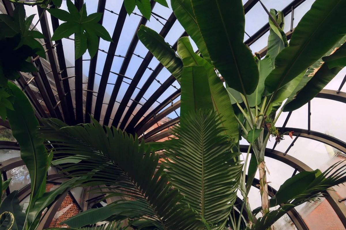 Bombay Sapphire Distillery tour @minkaguides glasshouse interior