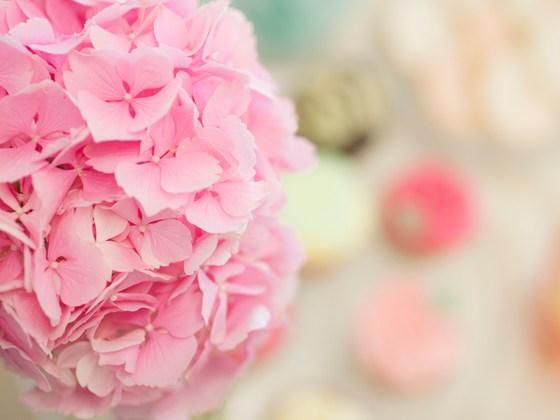 minna bakes ruusupuu