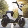 ペダル付きの電動バイクが6万円で発売!ブームの予感を先取る!!