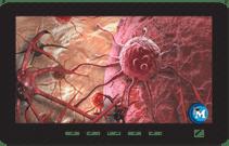 Pathophysiology instant access