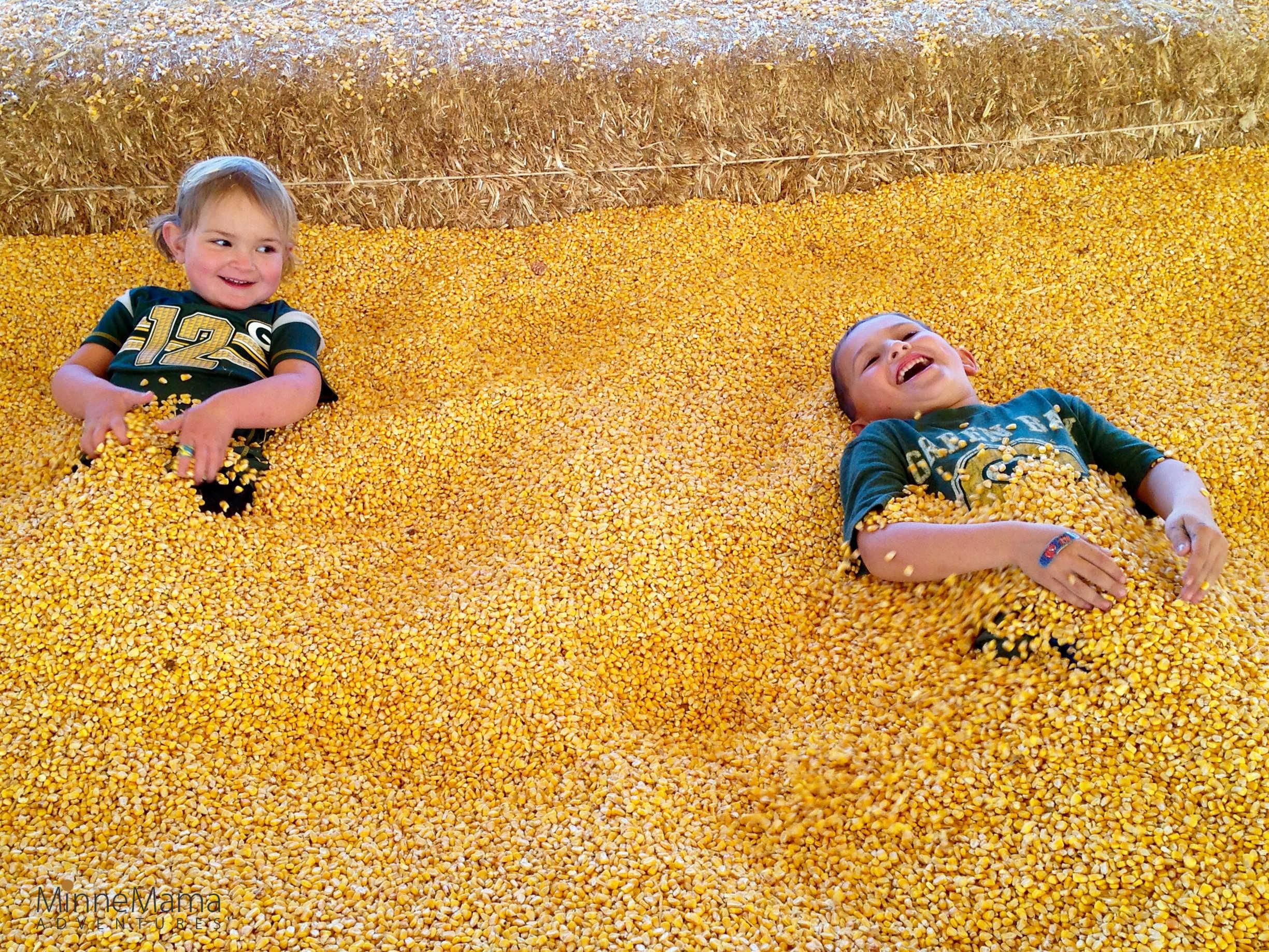 Severs Corn Maze And Fall Festival