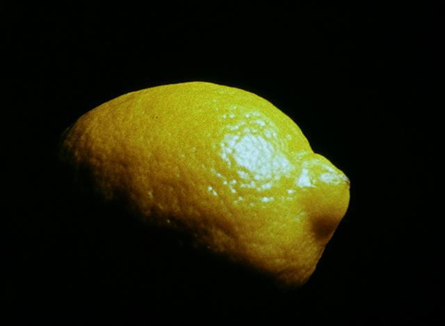 Hollis Frampton Lemon 1969
