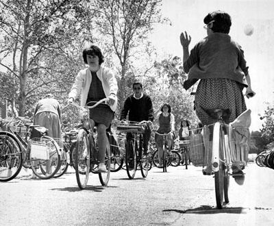 Cyclists at UC-Davis, c. 1960