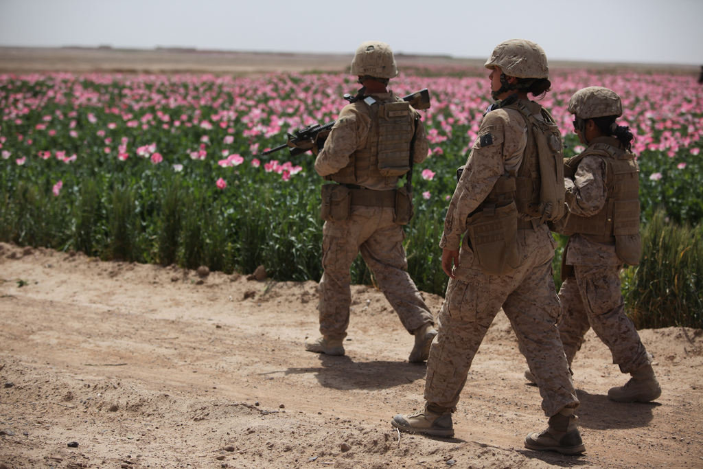 U.S. Marines assigned to the female engagement team (FET) of I Marine Expeditionary Force (Forward) conduct a patrol alongside a poppy field while visiting Afghan settlements in Boldak, Afghanistan, April 5, 2010. (DoD photo by Cpl. Lindsay L. Sayres, U.S. Marine Corps/Released)