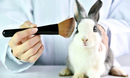 California Cruelty-Free Cosmetics Act