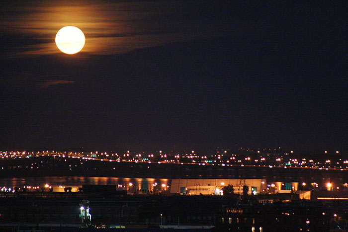 luna-montreal-roadtrip-canada-mipaseoporelmundo