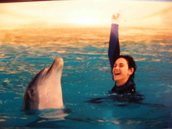 Ba arse con delfines en algarve - Banarse con delfines portugal ...