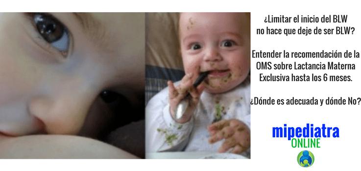 Oms lactancia materna exclusiva hasta los 6 meses y BLW