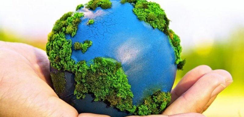 Advierte ONU sobre deficiente aplicación de leyes ambientales | MPV: opinión, ciudadanos, PRI, PAN, PRD