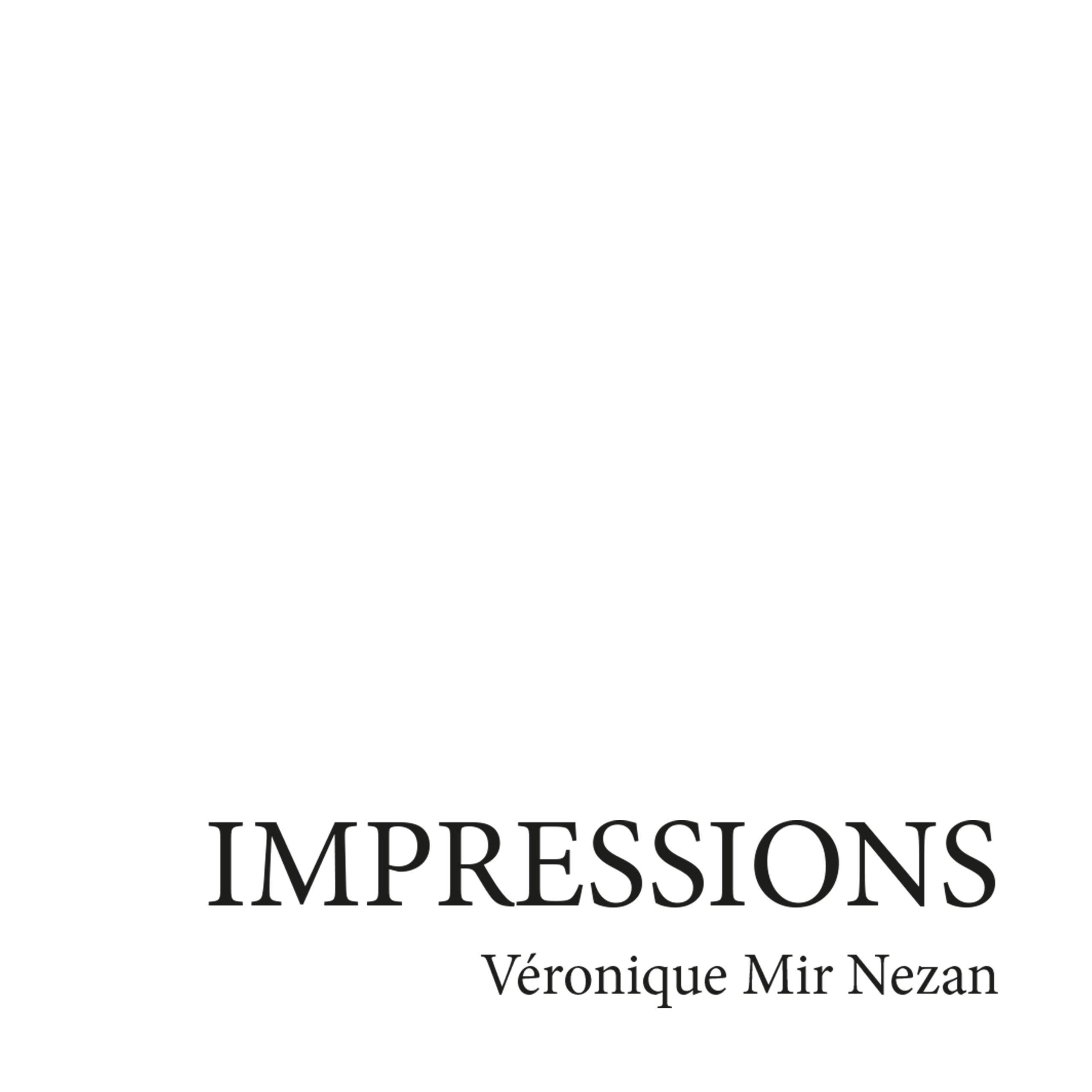 Logotype Mir-Nezan Artiste Plasticienne version finale