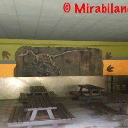 foto Mirabilandia Live