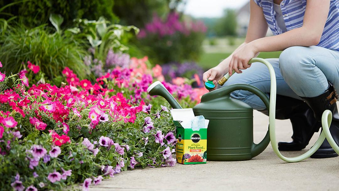 Use Miracle-Gro Plant Food - Woman tending her garden