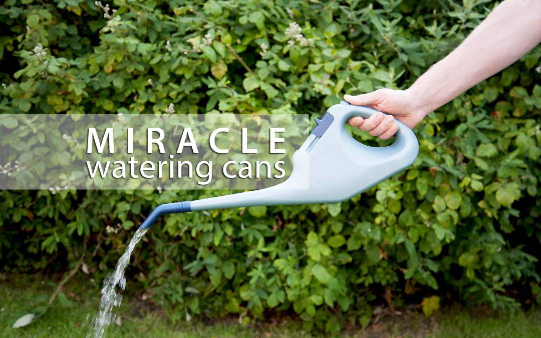 Small watering can with water saving control valve