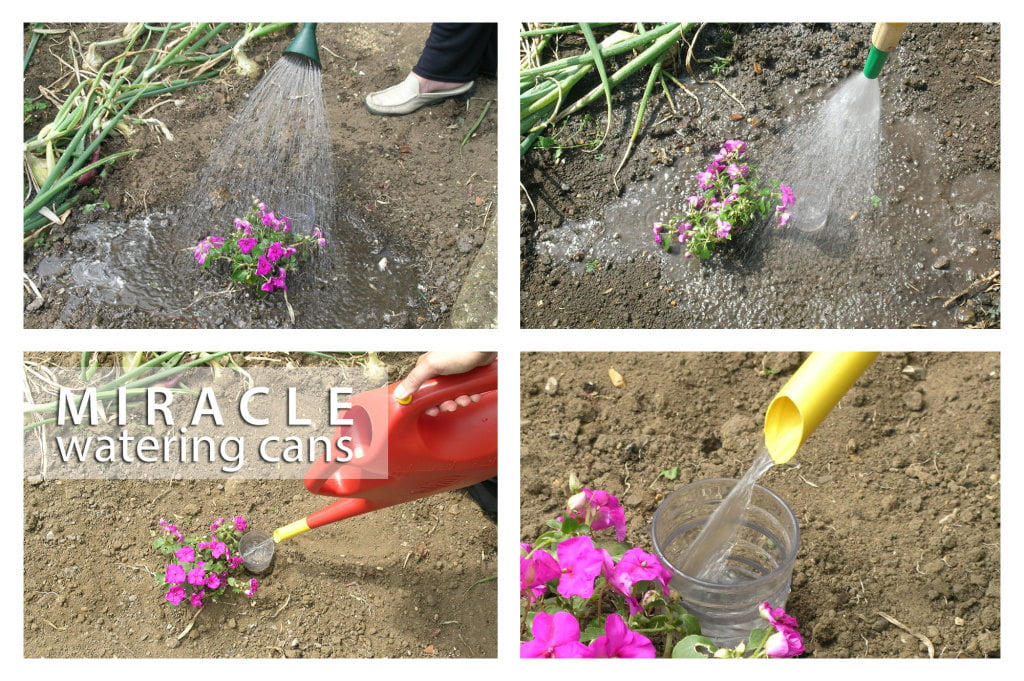 miracle-watering-can-precision-examples