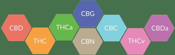 cbd oil compounds cbn