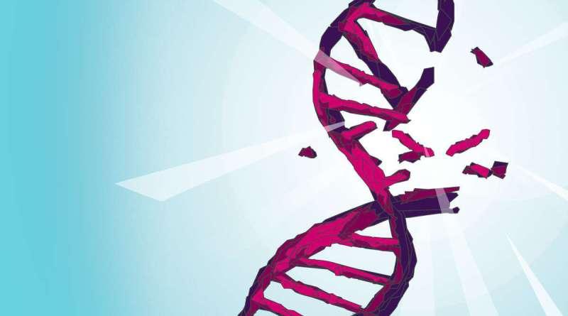 DNA ROSAK