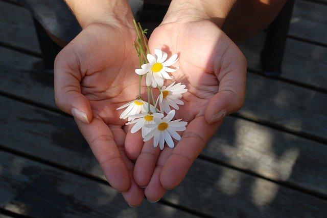 手に乗った花