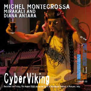 Cyberviking