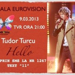 Mediasul voteaza azi la finala nationala Eurovision