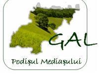 Conferinta GAL Podisul Mediasului