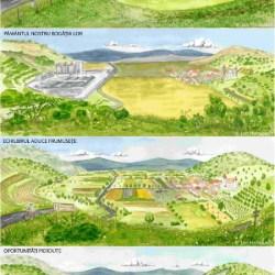 Cum ati vrea sa arate Transilvania in 2050?
