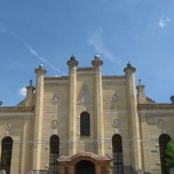 Sinagoga Mediaş a serbat un an de la înființarea Asociației Fanny Bäumel