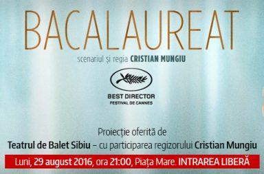 TBS-Bacalaureat-Piata-Mare-384x253
