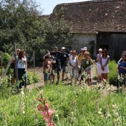Galerie foto&video: Sarbatoarea Tuberozelor din Hoghilag