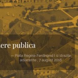 Dezbatere publica