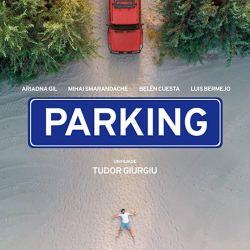 """Tudor Giurgiu aduce """"Parking"""" la Medias"""