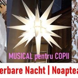 NOAPTEA MAGICA: Musical pentru copii de Hella Heizmann