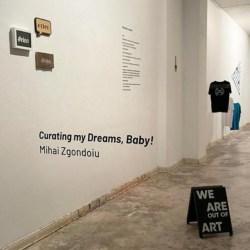 Medieşeanul Mihai Zgondoiu expune la Berlin