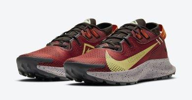 Pánské vínové tenisky a boty Nike Pegasus Trail 2 White Burgundy Yellow Black Orange CK4305-600 běžecké botasky a obuv Nike