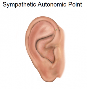 Sympathetic Autonomic Point