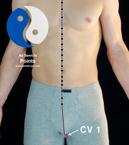 Acupuncture Point CV 1