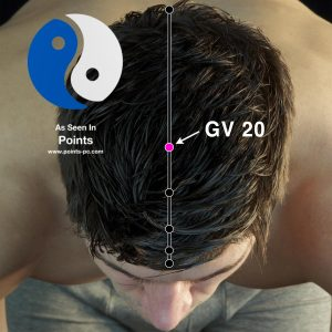 Acupuncture Point GV20