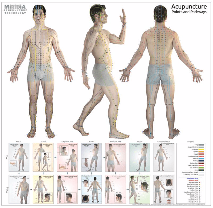 Acupuncture Gifts: Charts