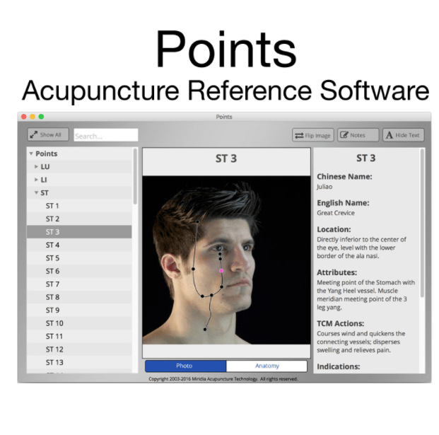 acupuncture gifts: Points