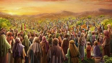 25 Juli 2021, Bacaan Injil 25 Juli 2021, Bacaan Injil Harian, Bacaan Kitab Suci, bacaan Pertama 25 Juli 2021, Bait Allah, Bait Pengantar Injil, Firman Tuhan, Gereja Katolik Indonesia, Iman Katolik, Injil Katolik, Katekese, Katolik, Kitab Suci, Komsos KWI, Konferensi Waligereja Indonesia, KWI, Lawan Covid-19, Mazmur Tanggapan 25 Juli 2021, Minggu Kerahiman Ilahi, Penyejuk Iman, Perjanjian Baru, Perjanjian Lama, Pewartaan, Renungan Harian Katolik 25 Juli 2021, Renungan Katolik Harian, Renungan Katolik Mingguan, Sabda Tuhan, Minggu Pekan Biasa XVI, Ulasan Kitab Suci Harian, Umat Katolik, Yesus Juruselamat