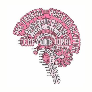 roze hersenen