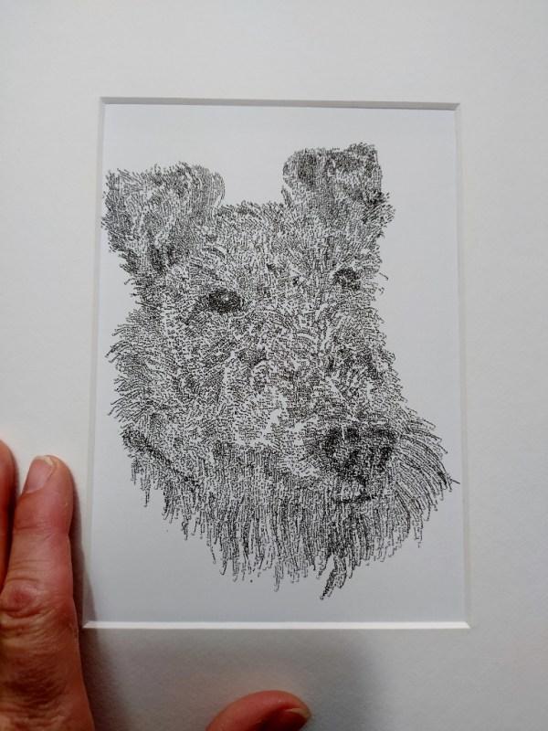 Calligram dog, name