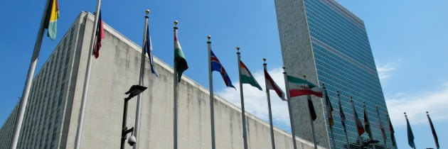 Commission for Social Development: 55th Session Held at the United Nations in New York City