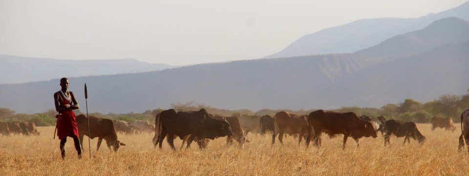 Conditional Empowerment: Shifting Community Land Rights for Kenyan Pastoralists