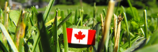 """Think Bigger: Canada's Shortcomings with """"Local"""" Sustainability"""