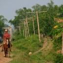 ¡Viva la Conservación! Learning from Cuba's Conservation Matrix