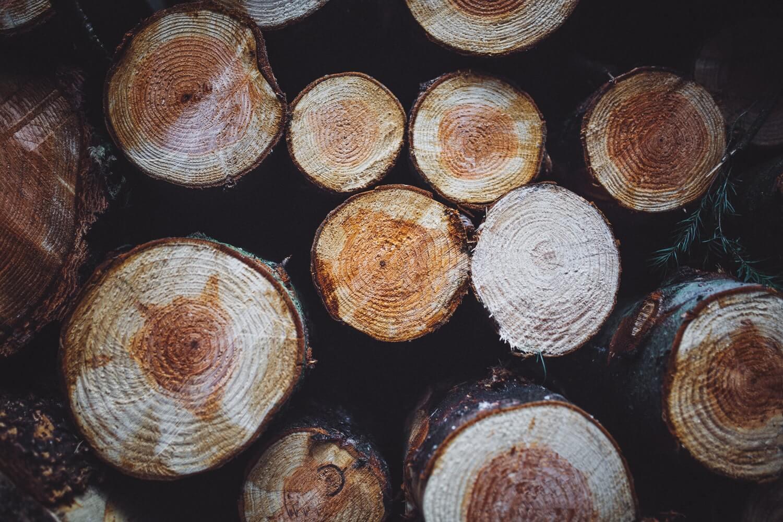Karlovački umirovljenik zbog krađe drva dobio uvjetu kaznu zatvora